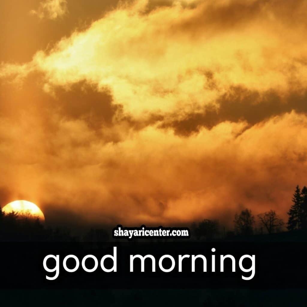 good morning images in hindi with shayari